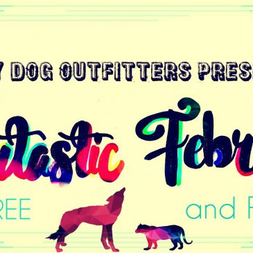 Furtastic February at Lucky Dog