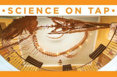 Science on Tap: Birds, Bones, Beetles & Bunker